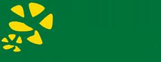 Polska szkoła florystyczna