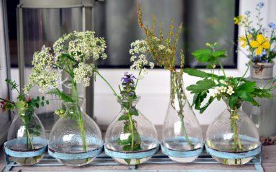 Kwiatowe obrazy 3D – warsztat dla każdego