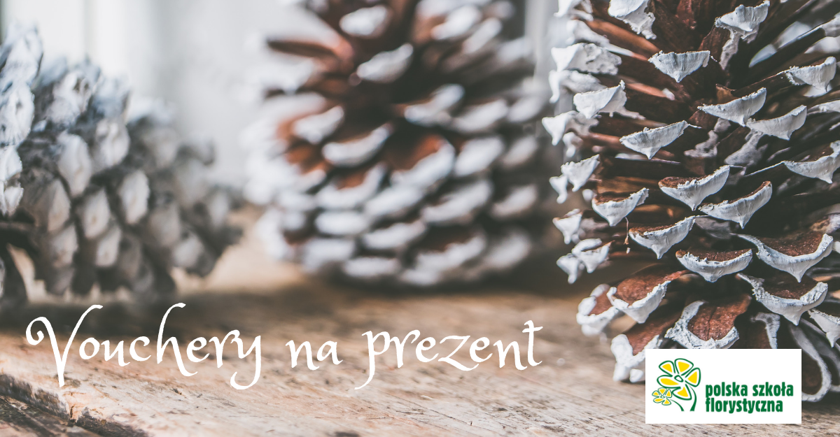 Vouchery świąteczne